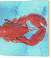 Lobster On Turquoise Wood Print