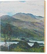 Loch Dun Luiche Donegal Ireland 2916 Wood Print