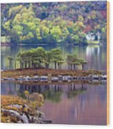 Loch Maree In Autumn Wood Print