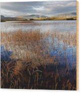Loch Mealt Wood Print