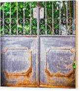 Locked Gate With Trees Wood Print
