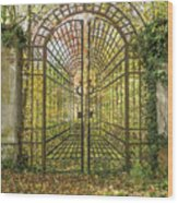 Locked Iron Gate In The Autumn Park.  Wood Print