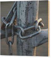 Locked Wood Print