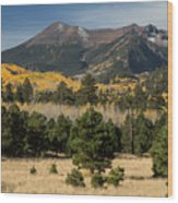 Lockett Meadow Autumn Wood Print