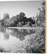 Lodi Pig Lake Reflections B And W Wood Print