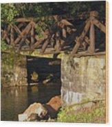 Log Bridge Wood Print