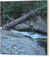 Log Over Deep Creek Wood Print