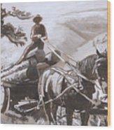 Log Wagon Historical Vignette Wood Print