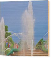 Logan Circle Fountain 2 Wood Print