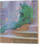 Logan Circle Fountain 5 Wood Print