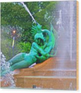 Logan Circle Fountain 6 Wood Print
