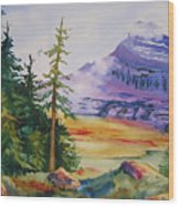Logan Pass Wood Print