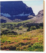 Logans Pass In Glacier National Park Wood Print