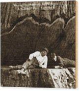 Logger With Ax On Springboard Loggers Sitting Inside Undercut  Circa 1890 Wood Print