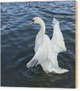 London Swan Wood Print