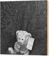 Lone Bear Wood Print