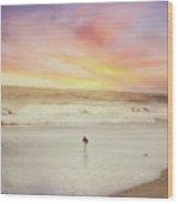 Lone Bird At Sunset Wood Print