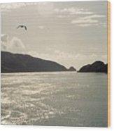 Lone Bird Over Marlborough Sounds Nz Wood Print