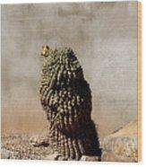 Lone Cactus In Sepia Tone Wood Print