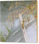 Lone Canoe Wood Print