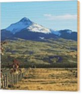 Lone Cone Mountain Wood Print