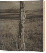 Lone Cone Post Wood Print