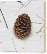 Lone Cone Wood Print