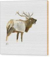 Lone Elk Wood Print