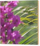 Lone Flower Wood Print