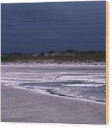 Lone Gull Awaits Storm Wood Print