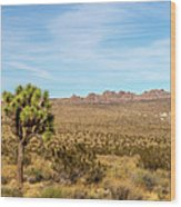 Lone Joshua Tree - Pleasant Valley Wood Print