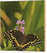 Lone Monarch Wood Print