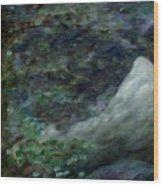 Lone Mountain Wood Print