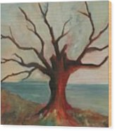 Lone Oak - Gulf Coast Wood Print