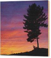 Lone Pine Sunset Wood Print