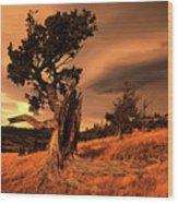 Lone Pine Whaleback Ridge Wood Print