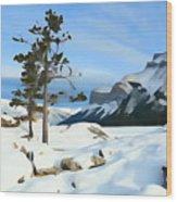 Lone Pines On Lakeshore Wood Print