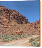 Lone Rock Valley Of Fire  Wood Print