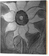 Lone Sunflower Iv Wood Print