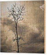 Lone Survivor  Wood Print