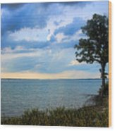 Lone Tree And Beach Flowers Wood Print