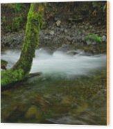 Lone Tree And Running Water Wood Print