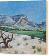 Lone Tree At The Ghost Ranch Wood Print