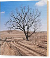 Lone Tree February 2010 Wood Print
