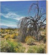 Lone Tree In Blooming Desert Wood Print