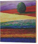 Lone Tree In Flower Fields Of Provence Wood Print
