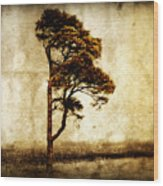 Lone Tree Wood Print by Julie Hamilton