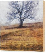 Lone Tree On Hill In Winter Wood Print