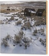 Lonely Bodie Wood Print