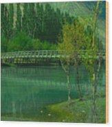 Lonely Buffalo Wood Print